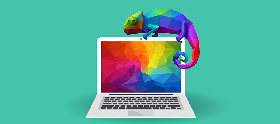 Chameleon on laptop